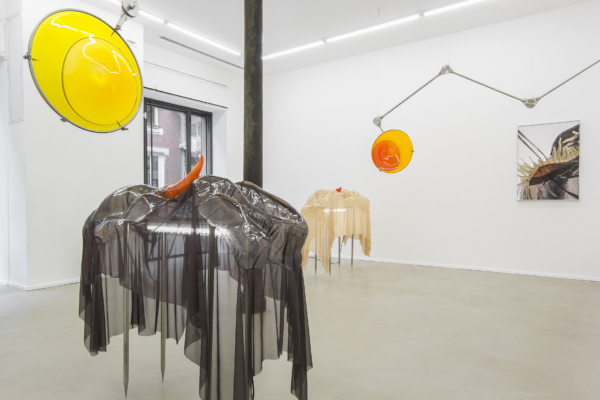 The Host: Pakui Hardware at East Contemporary